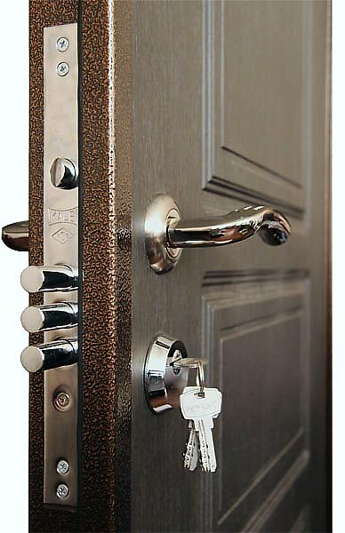 дверь Кондор X1 ( кондор Х1 )